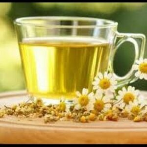Best Teas For FAST Weight Loss Under $10